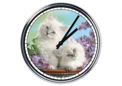 Orologio da parete in acciaio  Gattini